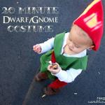 DwarfCostumetext