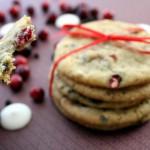 cranberrychocolatechipcookies_zps36720781