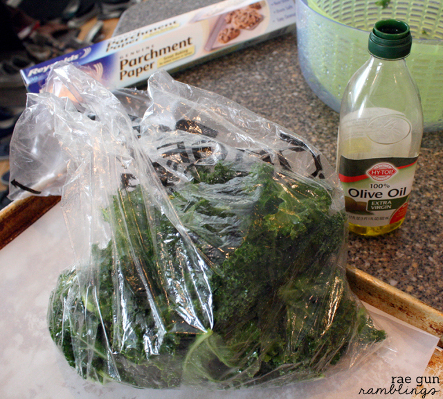 How to make kale chips, recipes, variations, storage, and eating tips - Rae Gun Ramblings