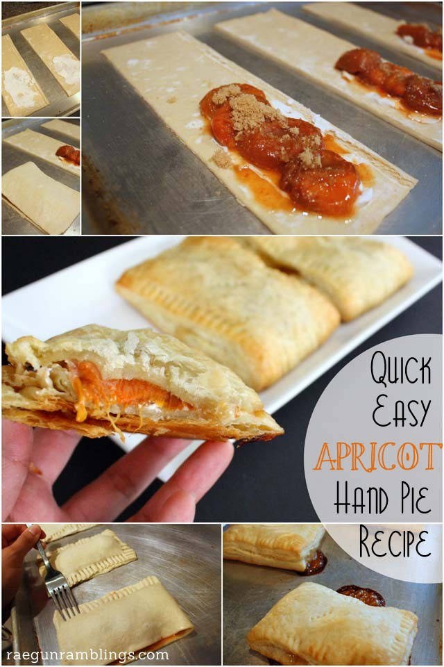 how to make delicious apricot hand pies - Rae Gun Ramblings