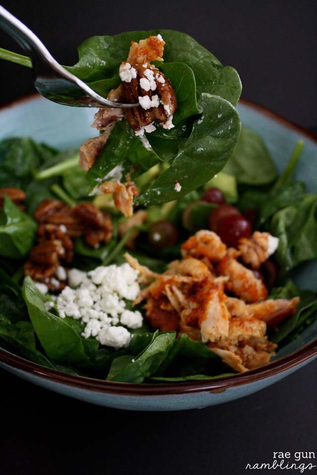 Maple Pecan Salad Recipe - Rae Gun Ramblings