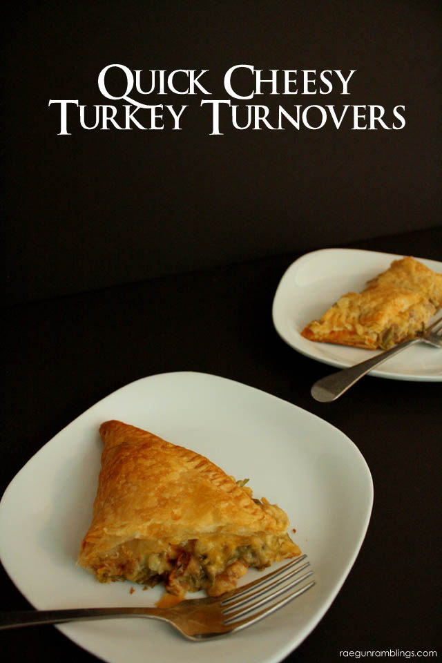 Thanksgiving Turnover perfect for using up Thanksgiving leftovers - Rae Gun Ramblings