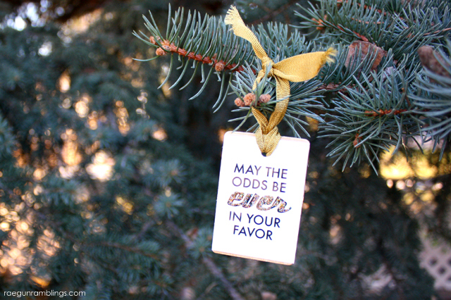 may the odds be ever in your favor ornament tutorial go hunger games rae - Christmas Decoration Games