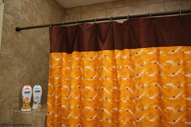 30 Minute Shower Curtain Tutorial with Softsoap Fresh and Glow - Rae ...