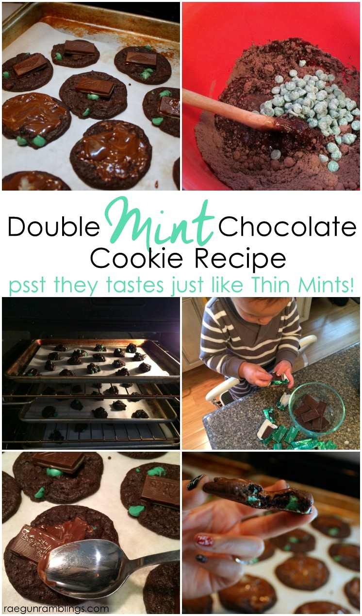 My new favorite. This 4 ingredient cookie recipe taste just like Girl Scout cookies thin mints. Great chocolate dessert.
