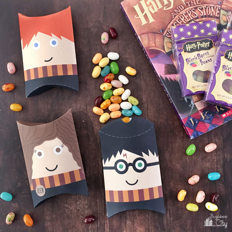 Harry POtter pillow boxes. Fun party favor idea.