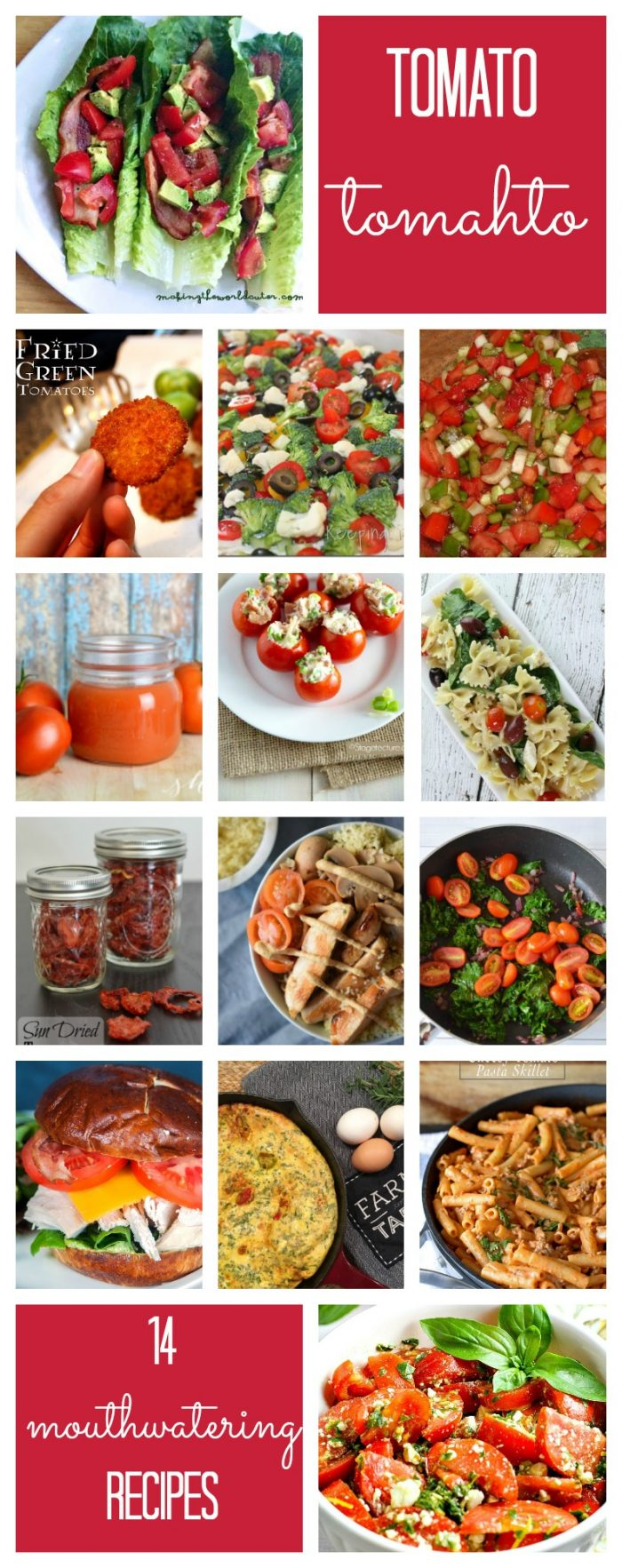 14 creative ways to use your fresh tomatoes. Tomato recipes.