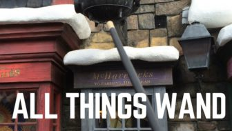 Do I Need an Interactive Harry Potter Wand?